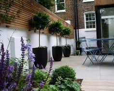 images about courtyard designs the smalls plus small for house small garden course from http www courses successfulgardendesign