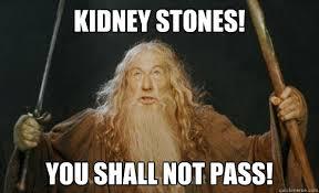 Kidney Stones Meme - kidney stones you shall not pass gandalf quickmeme