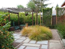 lawn options for the contemporary yard decor advisor