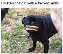 Funny Smile Meme - look for the girl with a broken smile internet meme joke meme