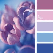 almost black blue color color of violets dark purple designer