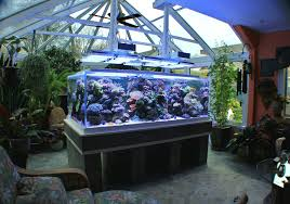 Aquarium Bed Set Feature Aquarium Paul Bruns 427 Gallon Sunroom Reef Advanced
