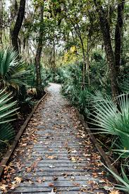 Botanical Gardens New Orleans by New Orleans Part Iii The Nature U2014 Lucy Hawthorne Photography