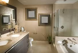 Bathroom Design Photos Choosing Between A Prefabricated Stall Or Tiled Shower