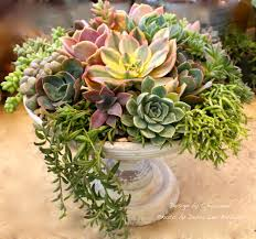 a succulent floral designer shows how to make a floral style
