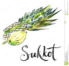 lulav and etrog for sale watercolor lulav and etrog sukkot plants stock vector