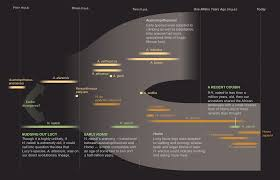 National Geographic Infographic Reveals What The Consumes Scientists Discover Human Like Species In South Africa Cave