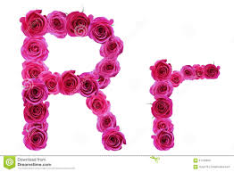 the letter r from roses stock photo image 57726853
