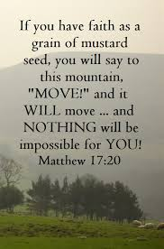 matthew 17 20 i say to you if you have faith as a mustard seed
