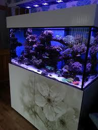 high gloss white marine steel frame aquarium custom built and