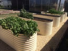 corrugated iron garden beds geelong raised ballarat