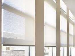 15 best ideas sheer roller blind curtain ideas