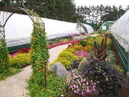 native plant nursery minnesota forest and floral garden center u2013 nursery greenhouse landscaping