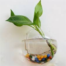 hanging flower pot glass ball vase terrarium wall fish tank