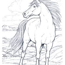 horse coloring pages print free archives mente beta