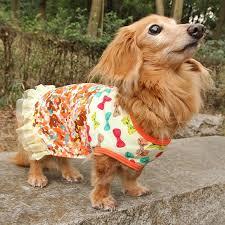 dog ribbon idog and icat rakuten global market idog eye dog ribbon