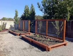 Backyard Botanical Complete Gardening System Wooden Raised Bed Garden With Trellis Outside Home Pinterest