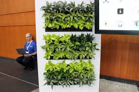 gorgeous self watering green walls add life and fresh air to any