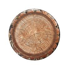 paper plates thanksgiving tree plates lumberjack party decorations 8ct 10 inch paper