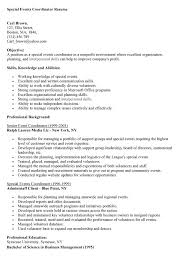 Non Profit Resumes Divine Comedy Essay Topics New World Order Essay Home Theater
