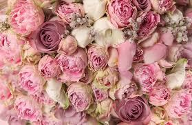 matrimonio fiori guida al matrimonio perfetto come scegliere i fiori per le