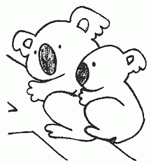 koala coloring pages free koala preschool coloring pages zoo