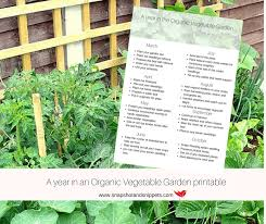 a year in the life of an organic vegetable garden snapshots and