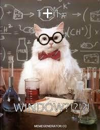 Meme Generator Javascript - confused math cat meme generator
