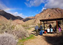 anza borrego desert song and service in anza borrego desert state park california