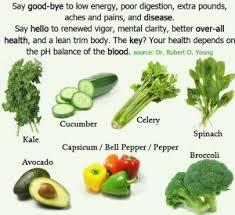 adopting the alkaline food diet water for life usa