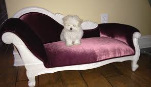 sofa awesome dog couch bed 22 about remodel sofa room ideas with