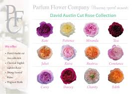 david fragrant garden roses collection 2014 2015