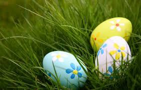 easter egg hunt eggs easter eggs in grass family