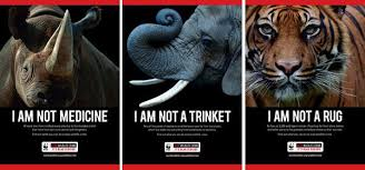 world wildlife fund anti poaching campaign avoids violent images