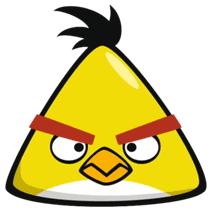 pig talent angry birds bird