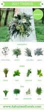 silver dollar city halloween 25 best silver dollar ideas on pinterest seeded eucalyptus