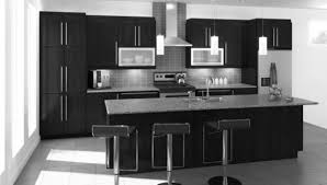 Black Cabinet Kitchen Ikea Cabinets Kitchen Love The High Gloss Gray Cabinets And Light