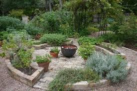 austin texas native plants rock rose inside austin gardens tour