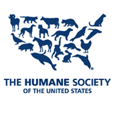 employment opportunities the humane society of the united states