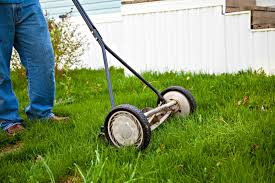how much does lawn mowing cost angie u0027s list