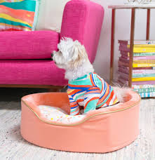 Oh Joy Furniture Dog Bowls Beds Toys And Apparel From Oh Joy For Target Dog Milk