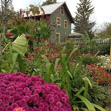 clifton garden cabin the garden