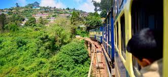meet nasik the wine capital of india viajes en tren de lujo