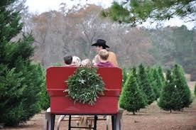 grant christmas tree farm and syrup mill grant la jim erica