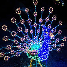christmas light displays in phoenix local holiday light displays exhibits and events in the phoenix