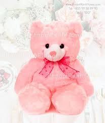 big teddy big teddy 0 6 meter height tb 07 phnompenhflower