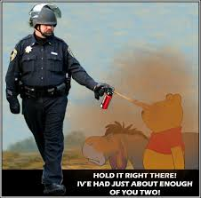Pepper Spray Meme - image 206140 casually pepper spray everything cop know your