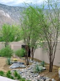Modern Front Yard Desert Landscaping With Palm Tree And Rock Lawns Are Very Interesting Modern And Attractive In Desert