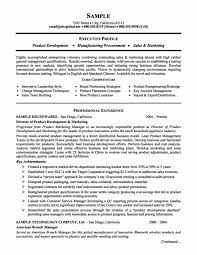 Solicitor Resume Sample Law Resumes Law Admissions Resume Example Sample