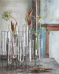 Test Tube Flower Vases Roost Arpeggio Test Tube Glass Vase U2013 Modish Store
